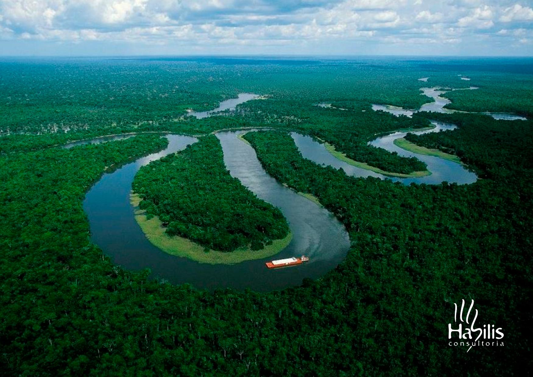 Blog Dia da Amazônia